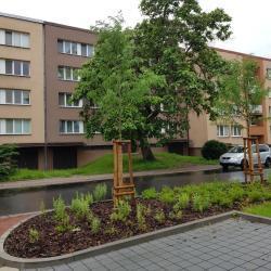 dr.1+1 40m2 s balkónem ul.Generála Janouška (1605727667/5)