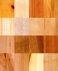 Péče o Vaše dřevo