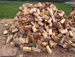 Štípané i metrové palivové dřevo (1609937220/4)