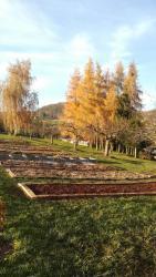 Prodej zemědělské usedlosti vobce Třebihošť okres (1617888964/5)