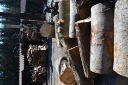 Štípačka na dřevo SN29-1 (1618420019/5)
