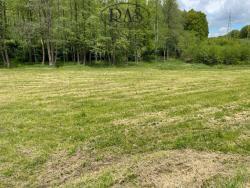 Pronájem,  Ostatní pozemky, 14 000 m2 - Pardubice - Kostelec u Heřmanova Městce (62/9)
