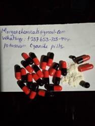 Kyanid draselný na prodej s čistotou 99,8% (prášek, pilulky a tekutina) (1625521136/2)